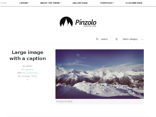 WordPress無料テーマ:Pinzolo
